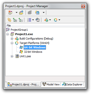 64-bit Windows platform in the Delphi XE2 project manager